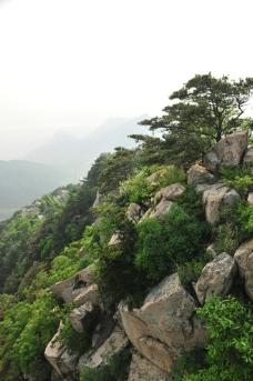 山石 山景图片