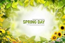 春天绿叶图片