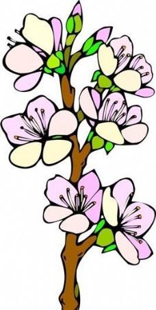 花朵 花草 鲜花 矢量 EPS格式_0012