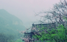 云台山天瀑图片