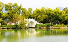 古榕桥秋意图片