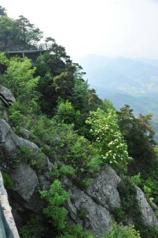 山石 山谷 山景图片