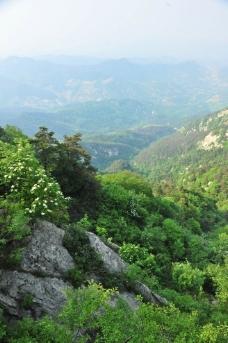 山谷 山石图片