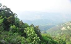山谷 山景图片
