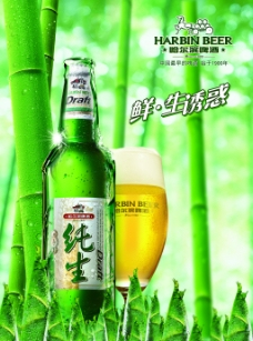 清爽啤酒海报