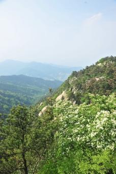山谷 山区图片