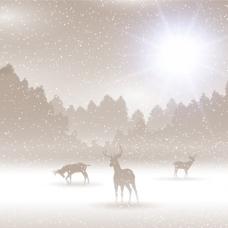 与鹿的冬季景观