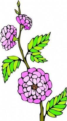 花朵 花草 鲜花 矢量 EPS格式_0007