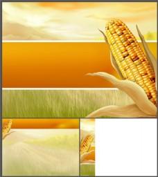 玉米PPT模板