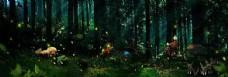 唯美绿色童话森林海报背景