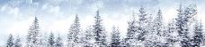 唯美雪天树林淘宝海报背景