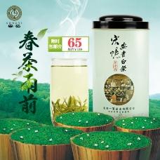 茶叶钻展图