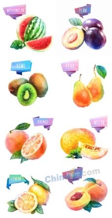 矢量手绘水果素材