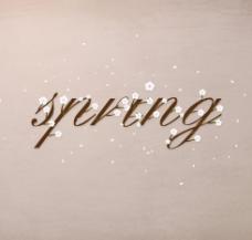 诗情画意春天的小花