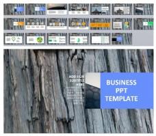 树皮背景工作汇报商务PPT模板下载