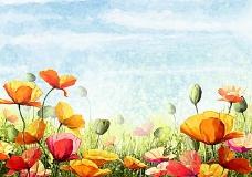 鲜花 手绘
