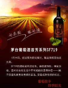 茅台葡萄酒首芳系列SF719图片