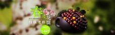 春季淘宝紫檀手串