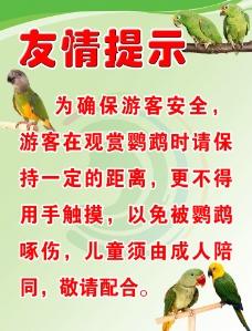 鹦鹉表演友情提示图片