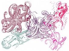 手绘鱿鱼和章鱼PS笔刷