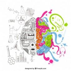 分析和创造性的大脑