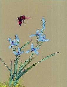 清新蝴蝶画图片