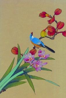 花鸟画图片