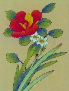 中国画花图片