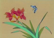 国画花香引蝶图片