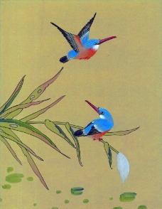 国画鸟图片