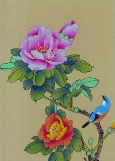莫牡丹花和鸟图片