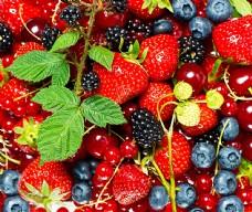 多种水果图