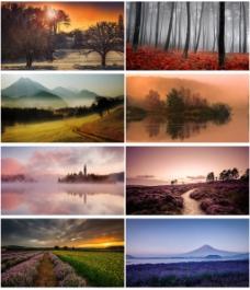 秋天风景背景图