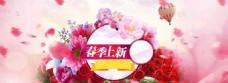 清新粉色花朵春季背景