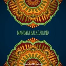 曼陀罗花的背景