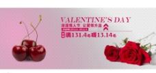 情人节海报 车厘子 玫瑰图片