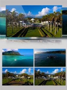 4K夏威夷森林旅游实拍宣传片
