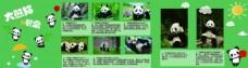 大熊猫海报设计