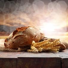 面包与麦穗