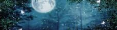 森林背景banner
