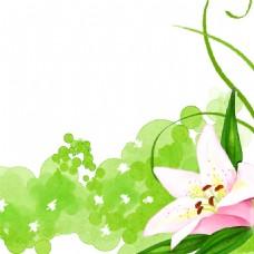 手绘唯美花朵