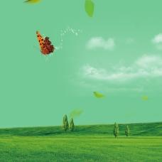 清新口香糖树叶蝴蝶草坪树背景