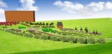 绿化景观设计图片