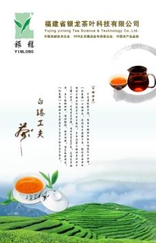 茶叶海报PSD