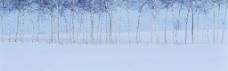 雪景淘宝海报图片背景素材 (51)