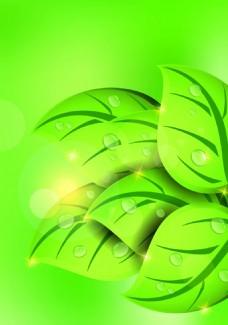 绿色树叶背景装饰