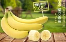 香蕉水果上市海报图片