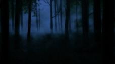 暗黑森林动态Led视频