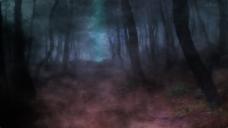 神秘黑森林万圣节动态Led视频