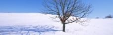 雪景淘宝海报背景图片 (34)